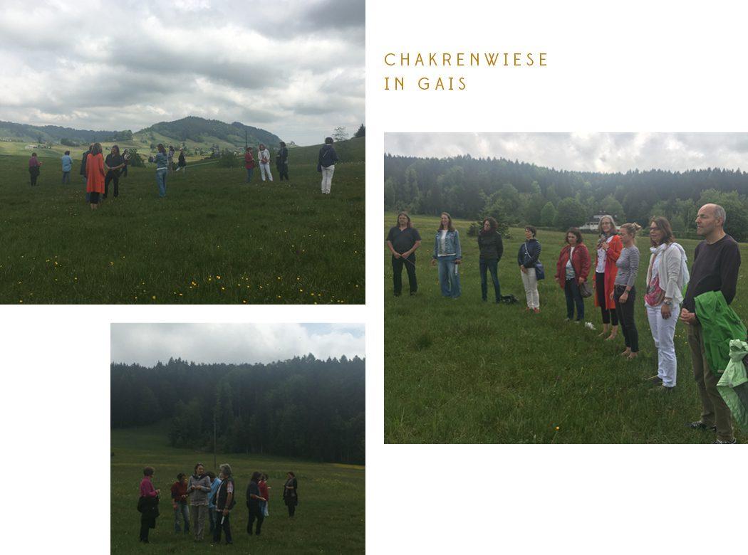 Neue Geomantie - Geomantieausbildung Chakrenwiese